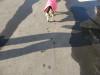 Dumbo_20080309_11