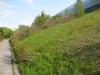 Dumbo_200800518_094
