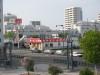 Dumbo_200800518_156