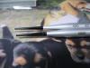 Kaimono_20090622_04