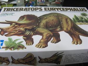 Triceratops_001