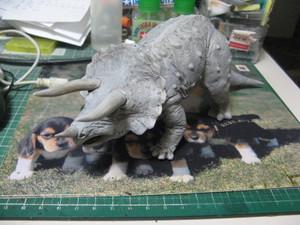 Triceratops_003
