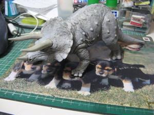 Triceratops_004