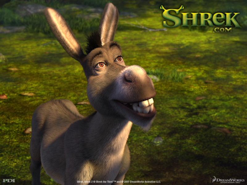 Chr_donkey_p2_800