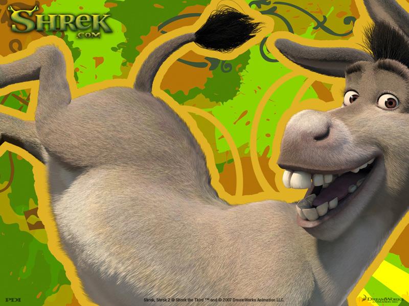 Chr_donkey_p4_800