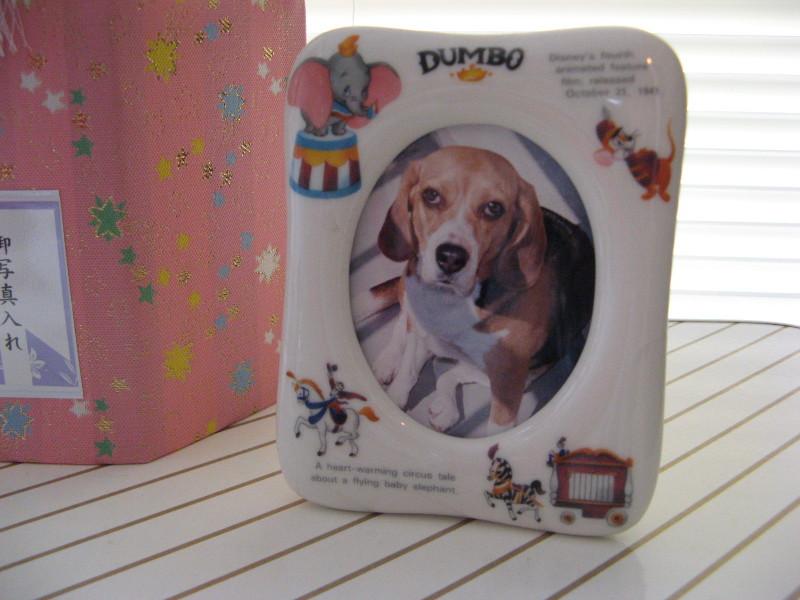 Dumbo_20110319_23