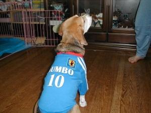 Dumbo_20041230_03